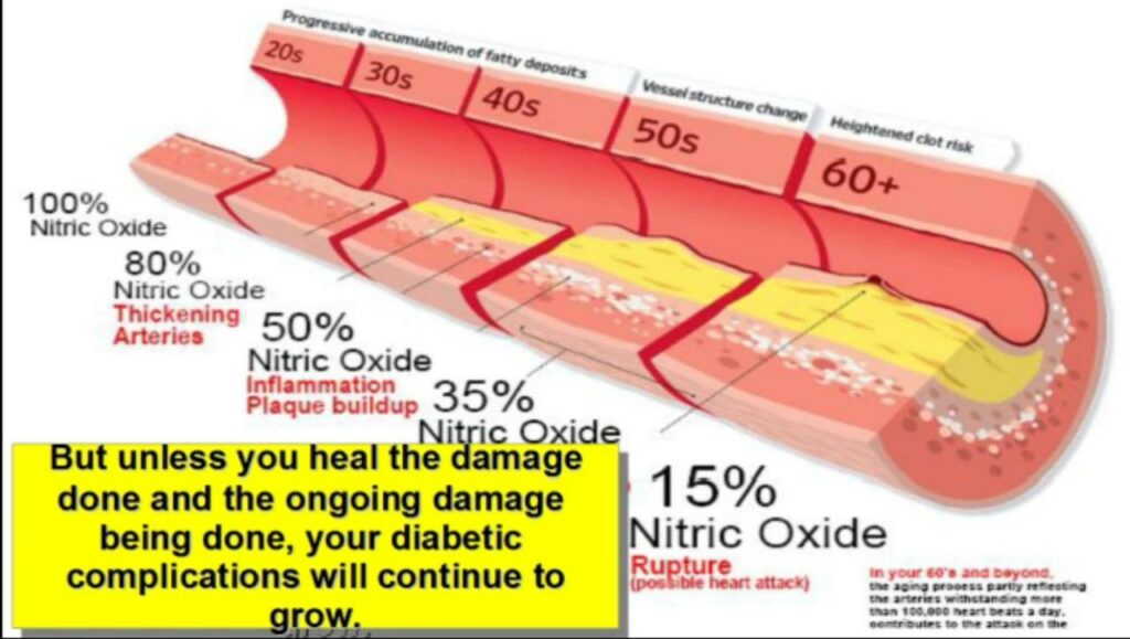 Fungsi Nitric Oxide Proargy 9+ synergytato 087875863425